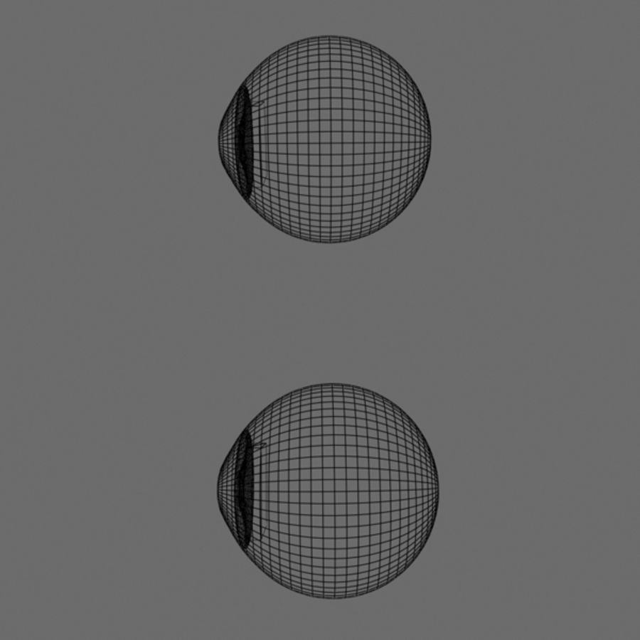 Boules oculaires royalty-free 3d model - Preview no. 6