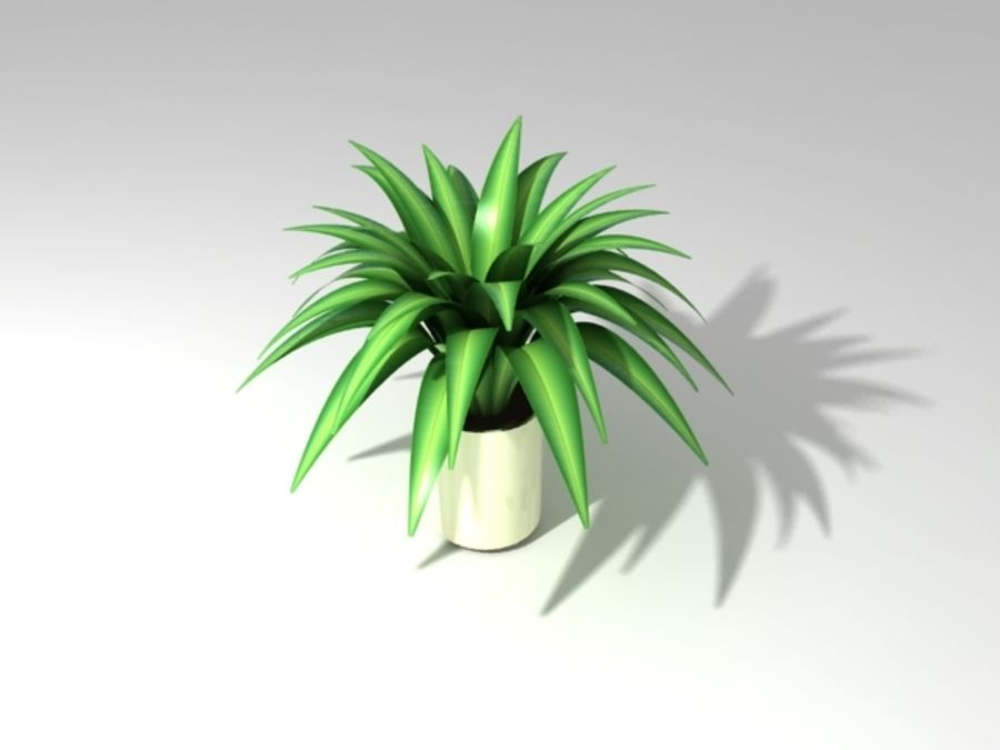 Petite plante royalty-free 3d model - Preview no. 1