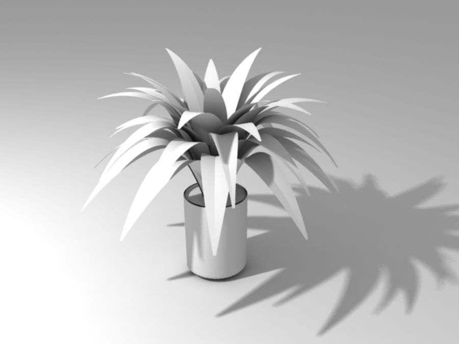 Petite plante royalty-free 3d model - Preview no. 2