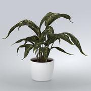 Roślina z doniczką 3d model