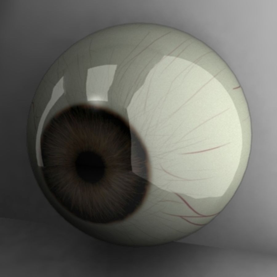 brown eye royalty-free 3d model - Preview no. 1