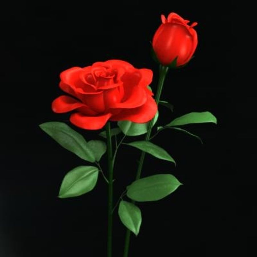 Roses royalty-free 3d model - Preview no. 2