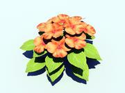 Orange Impatien Flower 3d model
