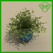 potted_plant_a 3d model