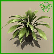 plant_potted_b 3d model