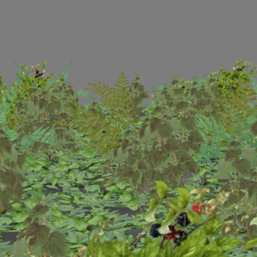 Lowpoly - Plants - 2 royalty-free 3d model - Preview no. 1