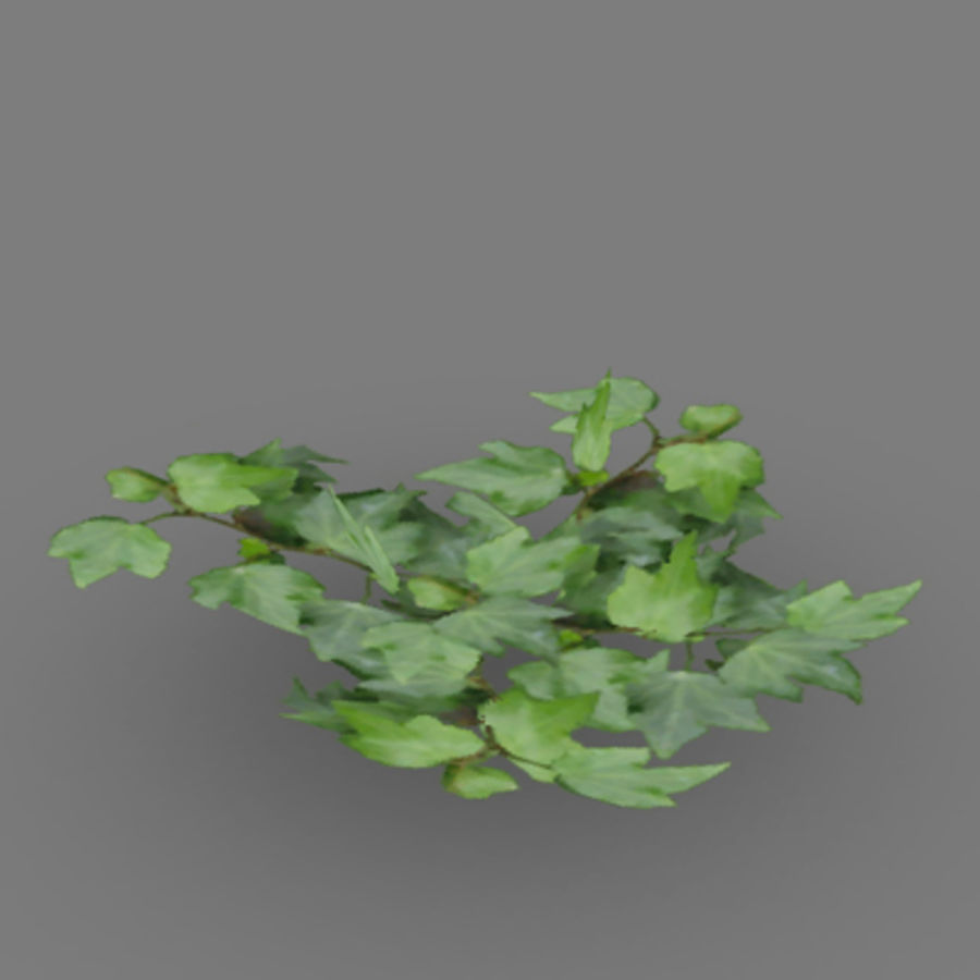 Lowpoly - Plants - 2 royalty-free 3d model - Preview no. 9