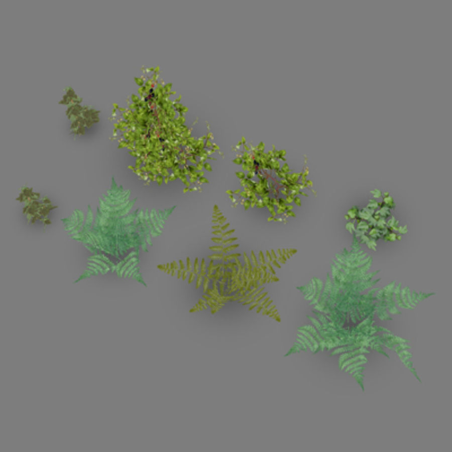 Lowpoly - Plants - 2 royalty-free 3d model - Preview no. 4