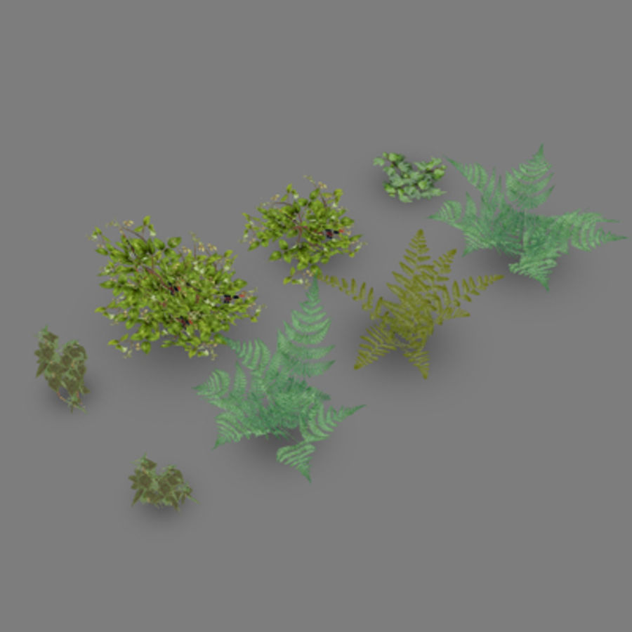 Lowpoly - Plants - 2 royalty-free 3d model - Preview no. 3