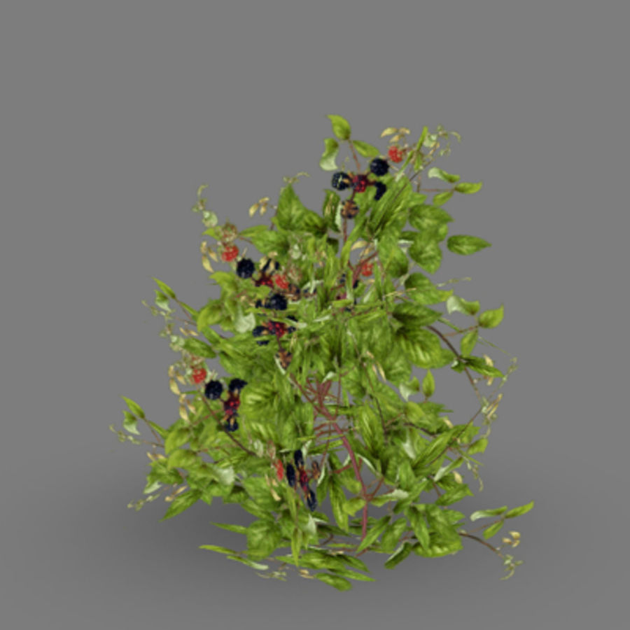 Lowpoly - Plants - 2 royalty-free 3d model - Preview no. 6
