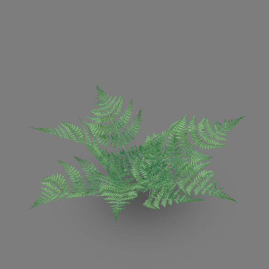 Lowpoly - Plants - 2 royalty-free 3d model - Preview no. 8