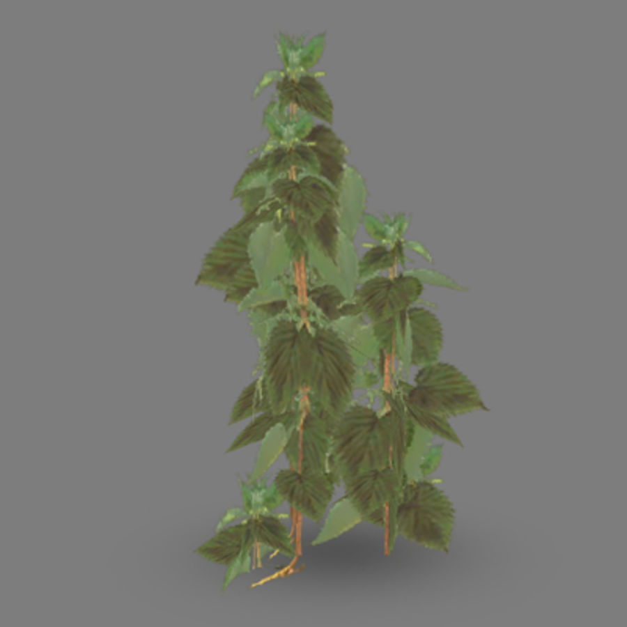 Lowpoly - Plants - 2 royalty-free 3d model - Preview no. 5