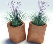 Cip Vase 3d model