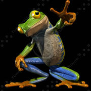 frogTS.mb 3d model