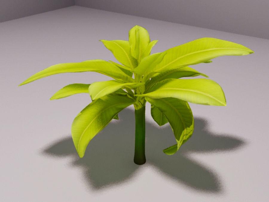 drzewo bananowe royalty-free 3d model - Preview no. 1