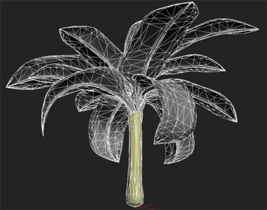 drzewo bananowe royalty-free 3d model - Preview no. 8