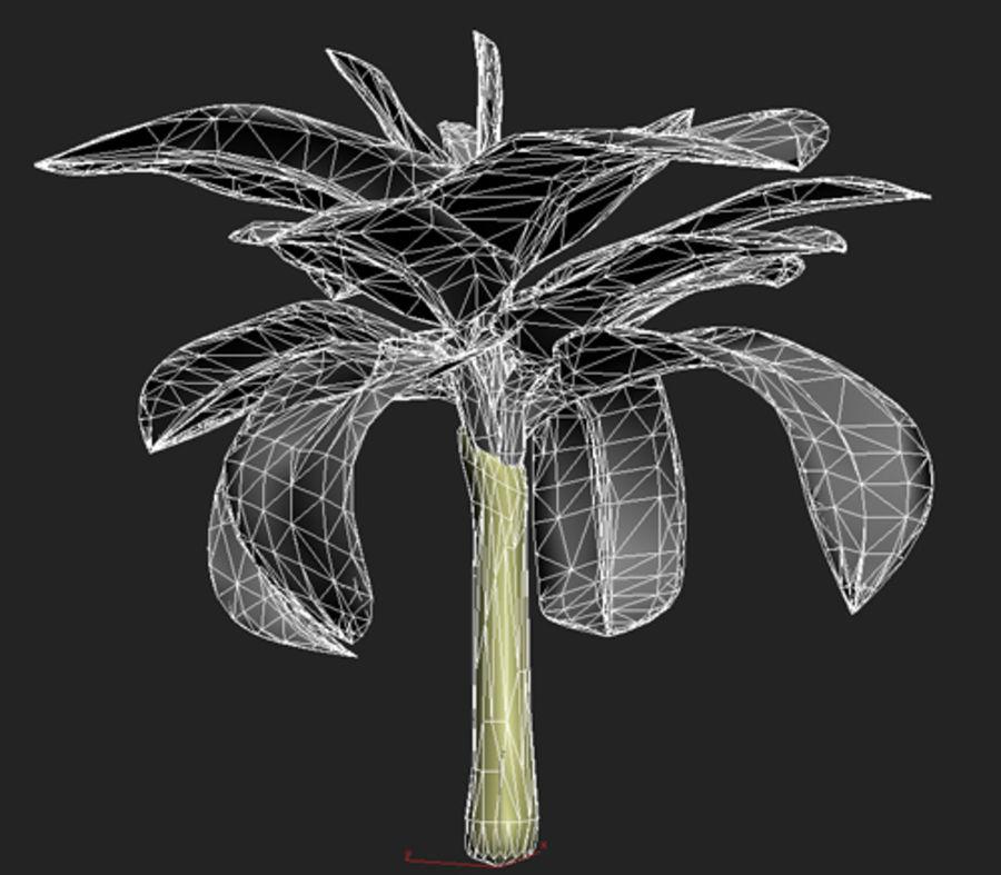 drzewo bananowe royalty-free 3d model - Preview no. 7