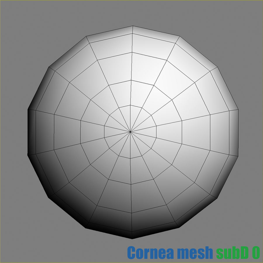 Menschliches Auge royalty-free 3d model - Preview no. 7
