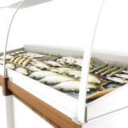 Deli Fish Counter 3d model