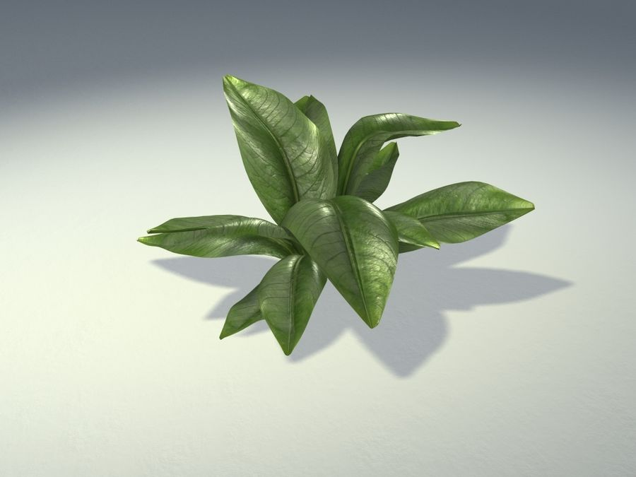 Planta da casa royalty-free 3d model - Preview no. 1