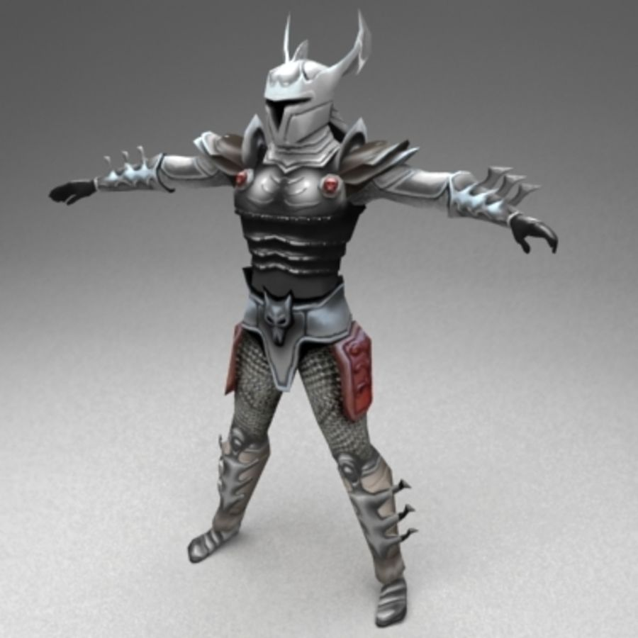 Fantasy warrior royalty-free 3d model - Preview no. 1