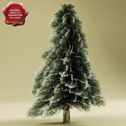 雪の中で低いモミの木 3d model
