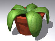 Plant in een pot laag poly 3d model