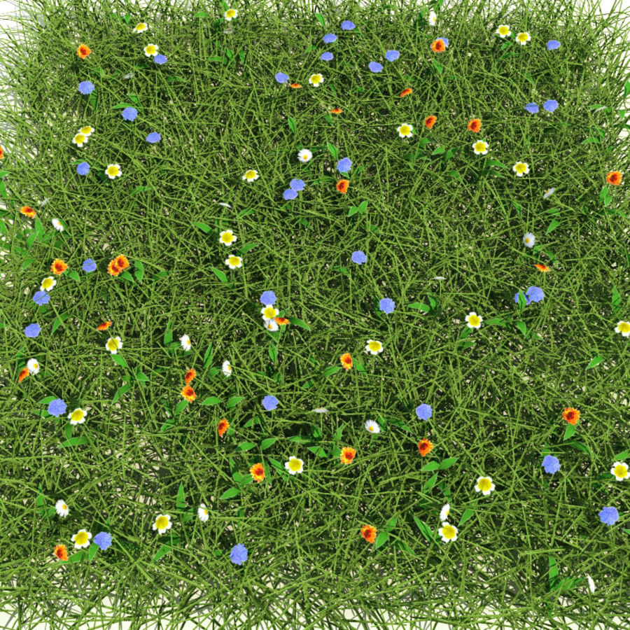 Meadow Mix royalty-free 3d model - Preview no. 2