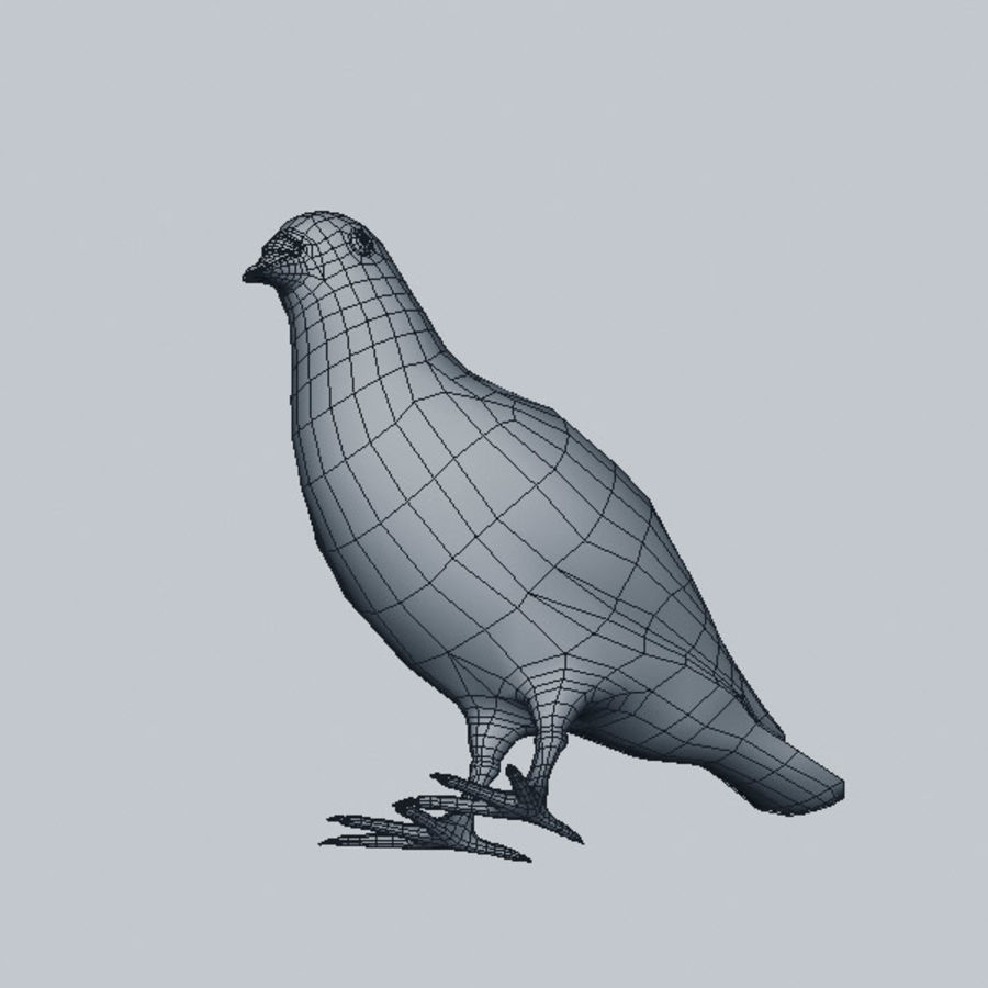 Pigeon royalty-free 3d model - Preview no. 7