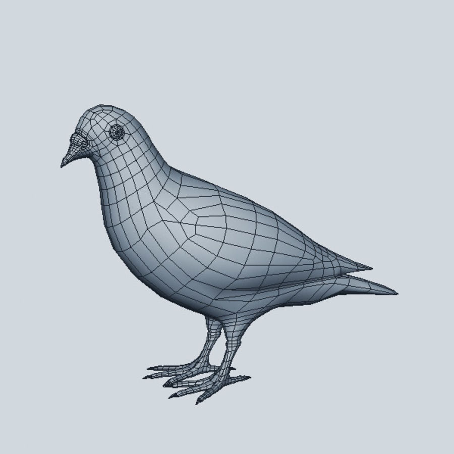Pigeon royalty-free 3d model - Preview no. 6