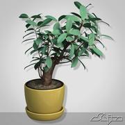 Vaso com pequeno arbusto 3d model