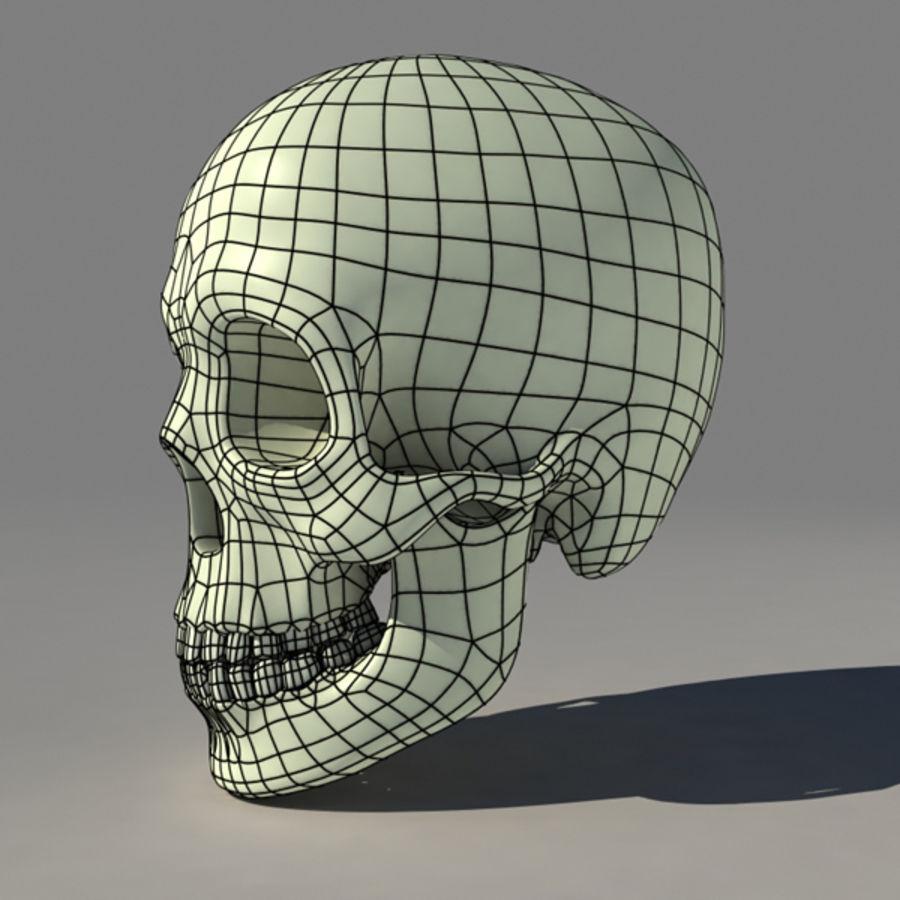 Human Skull royalty-free 3d model - Preview no. 5