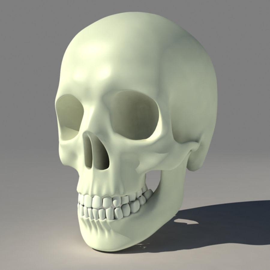 Human Skull royalty-free 3d model - Preview no. 1