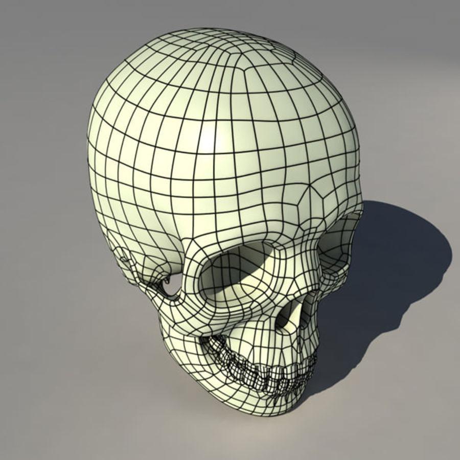 Human Skull royalty-free 3d model - Preview no. 7
