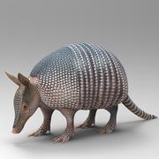 Dasypodidae 3d model