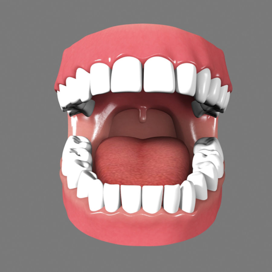Boca royalty-free 3d model - Preview no. 1