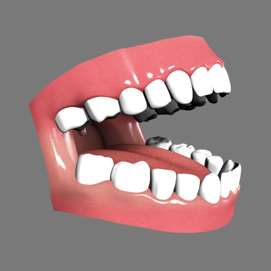 Boca royalty-free 3d model - Preview no. 5