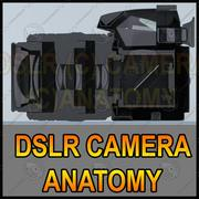 Cutaway DSLR camera 3d model