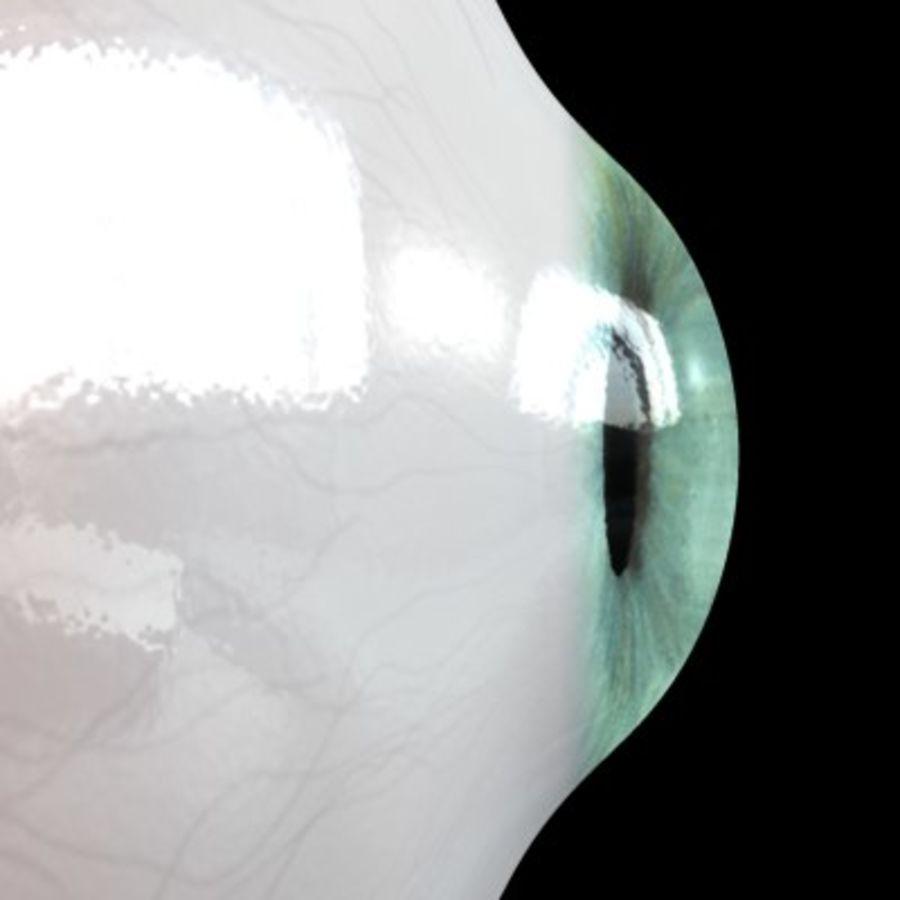 Göz royalty-free 3d model - Preview no. 4