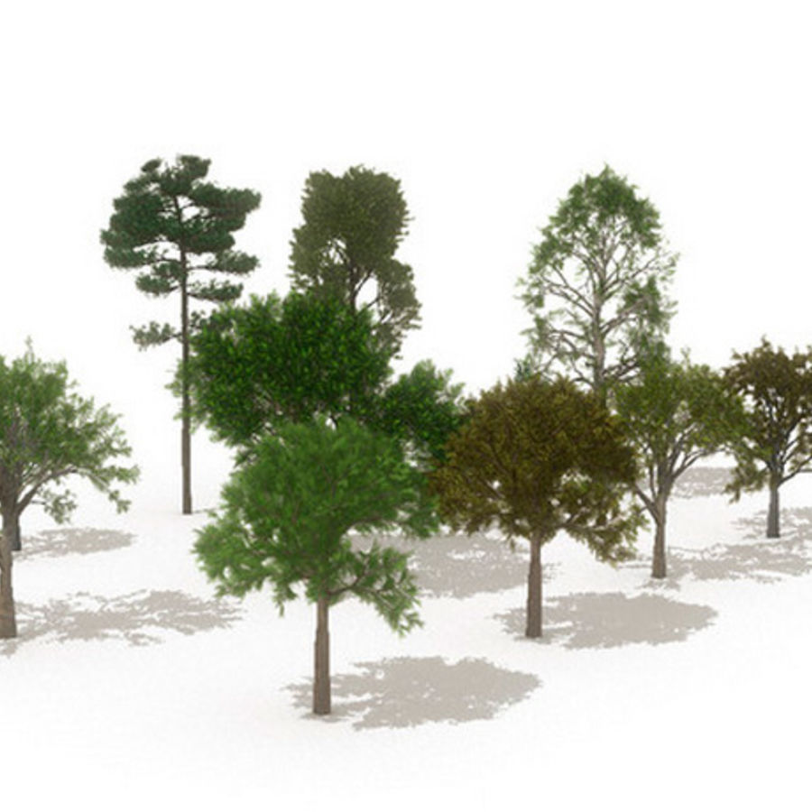 12 arbres européens royalty-free 3d model - Preview no. 1