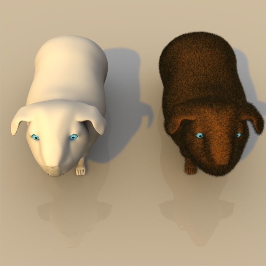 Meerschweinchen royalty-free 3d model - Preview no. 2