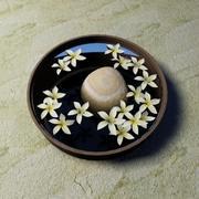 Hawaiian white plumeria flowers in bowl 3d model