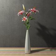 madonna lily in vase 3d model