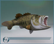 Big Mouth Bass 3d model