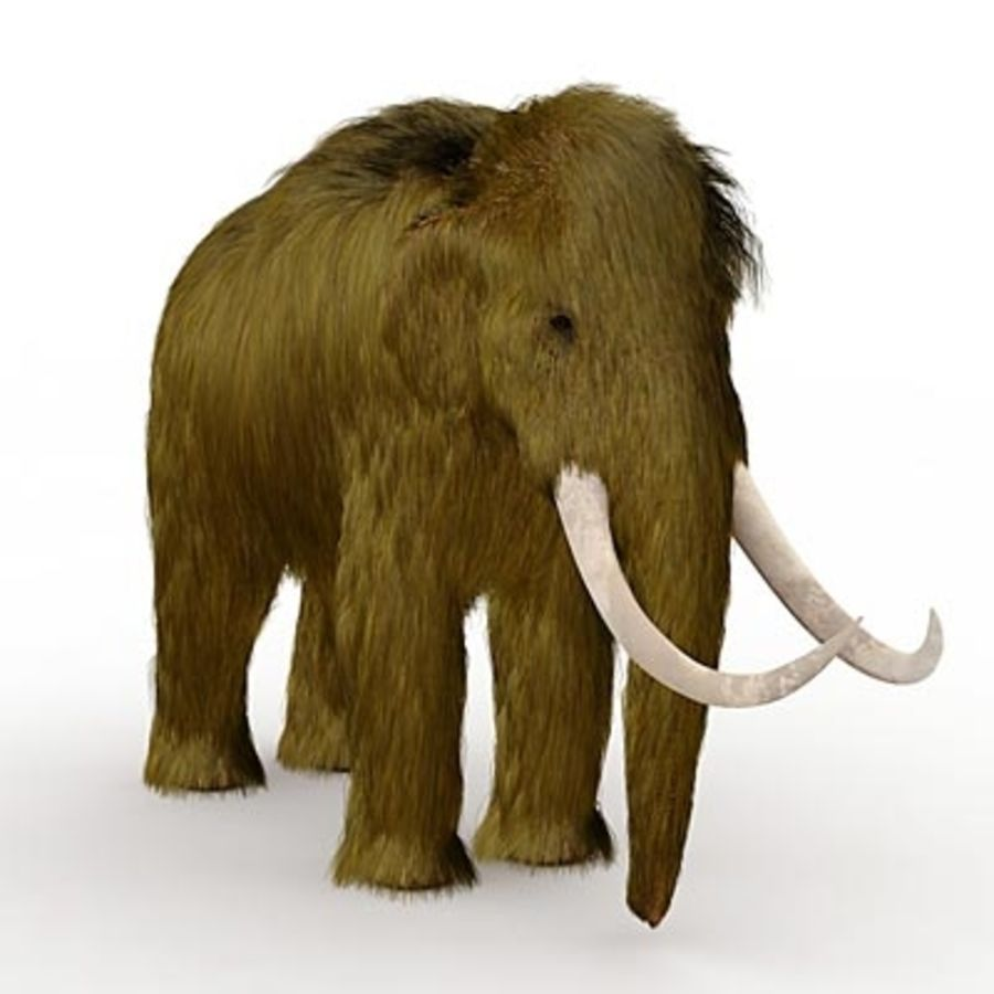Mammoth by 3DRivers royalty-free 3d model - Preview no. 2