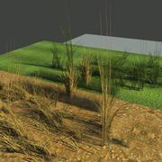 一套两个物理Grasses.zip 3d model