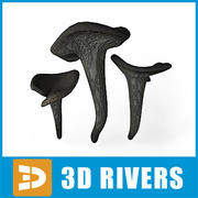 Black trumpet by 3DRivers 3d model