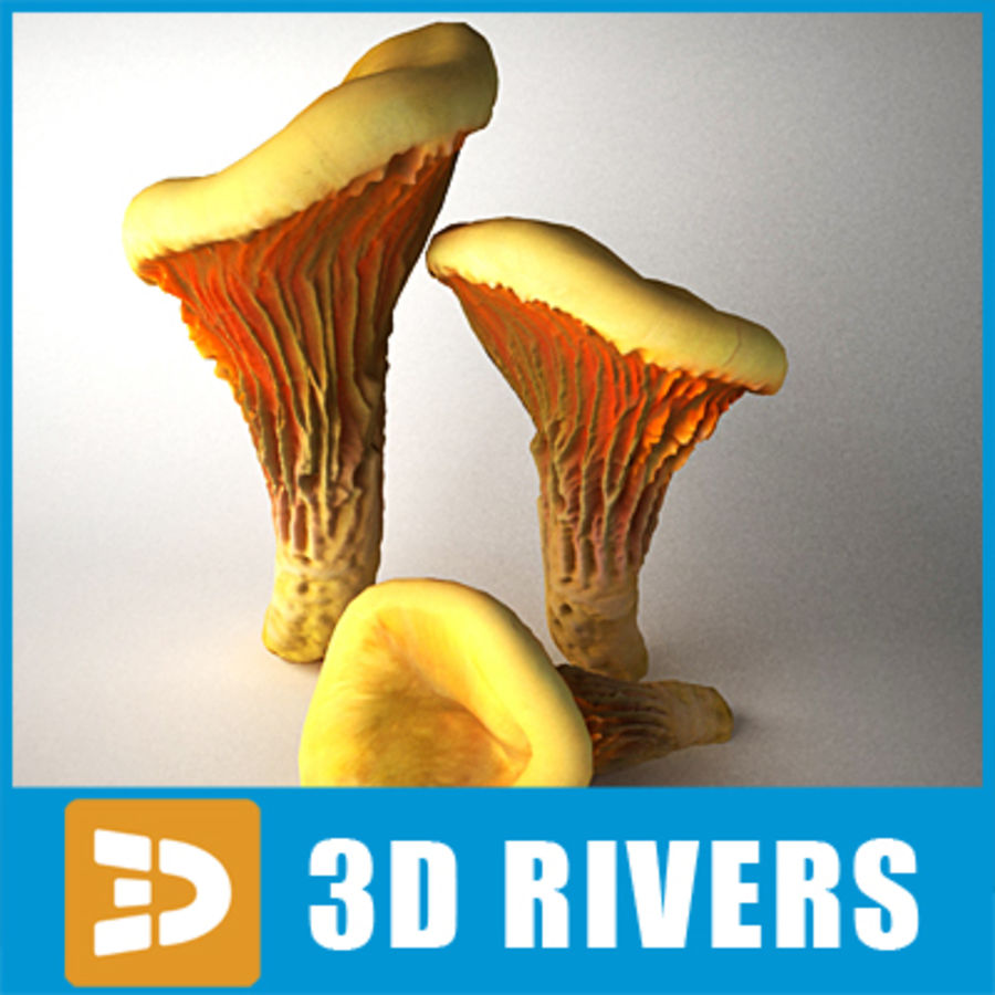 Pfifferling von 3DRivers royalty-free 3d model - Preview no. 1