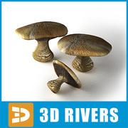Blewitt by 3DRivers 3d model