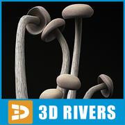 Enoki Mushroom by 3DRivers 3d model